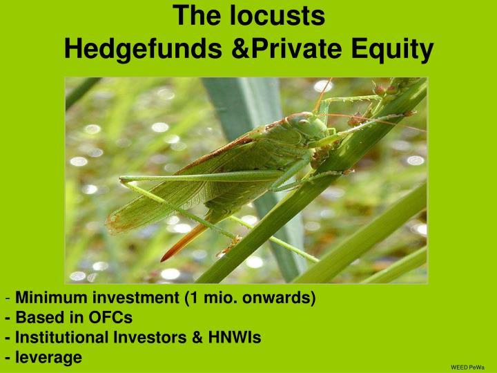 The locusts