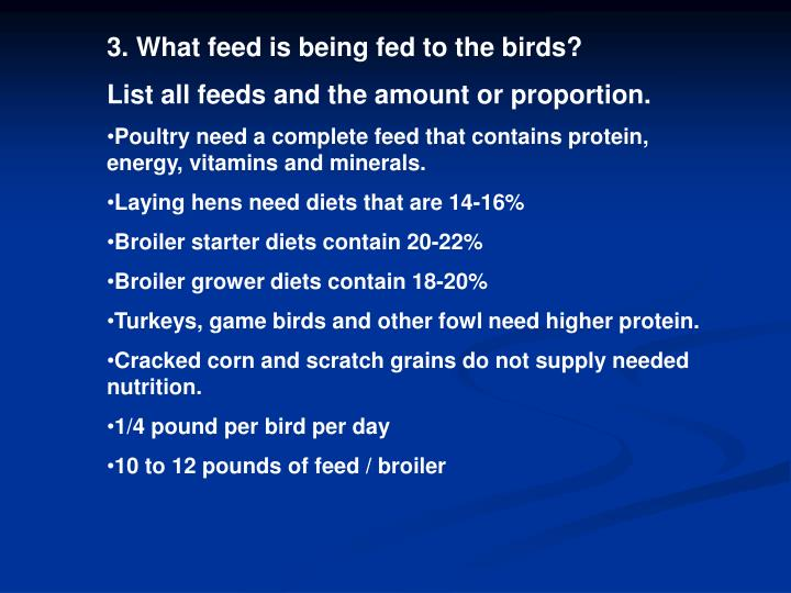 3. What feed is being fed to the birds?