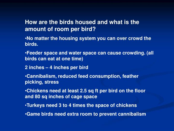 How are the birds housed and what is the amount of room per bird?