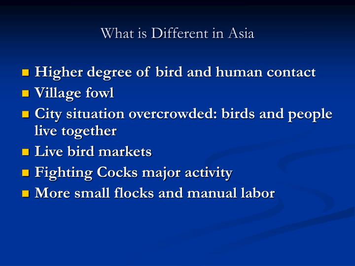 What is Different in Asia
