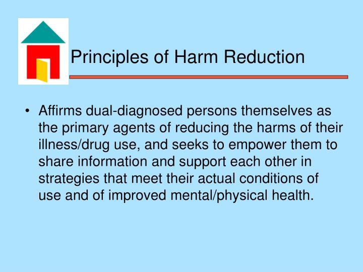 harm principle essay The smalrus web site essay- john stuart mill's position on paternalism and the harm principle.