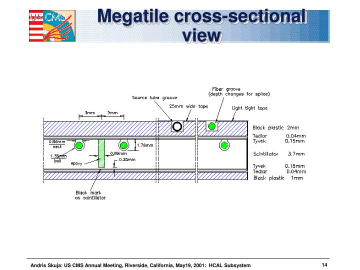 Megatile cross-sectional view