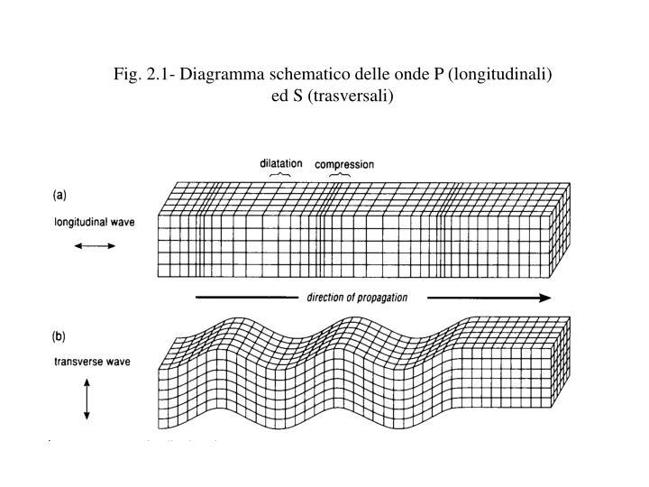 Fig 2 1 diagramma schematico delle onde p longitudinali ed s trasversali