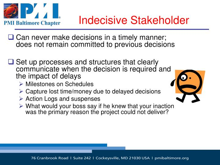Indecisive Stakeholder