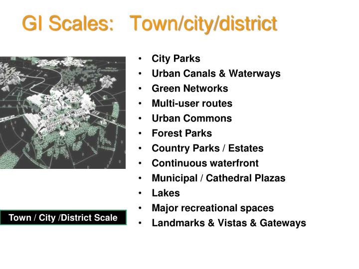 GI Scales: Town/city/district