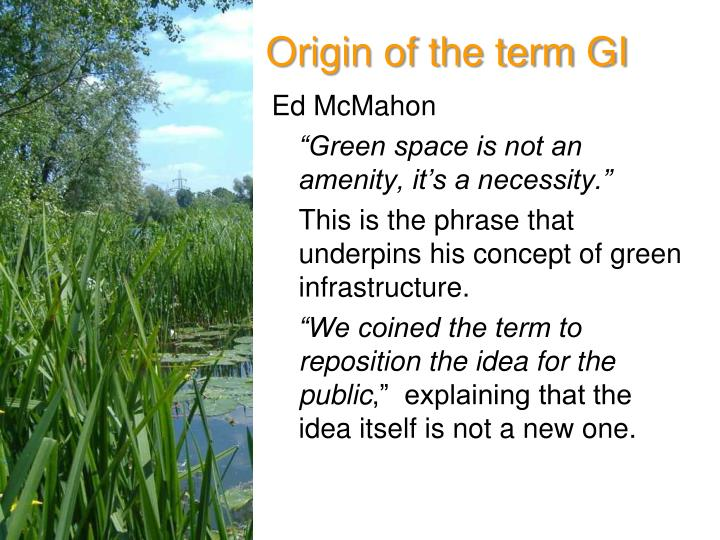 Origin of the term gi