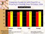 crabgrass control with prowl ec vs prowl h 2 0 in dryland strip till cotton 2004