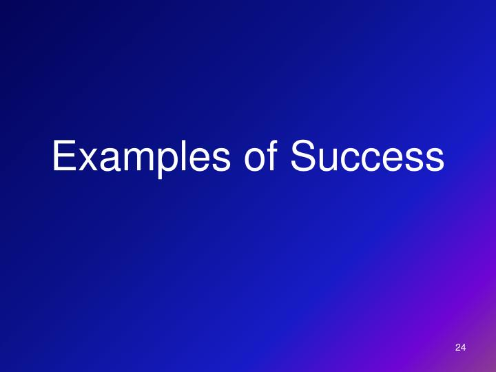 Examples of Success