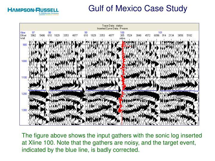 Gulf of mexico case study1