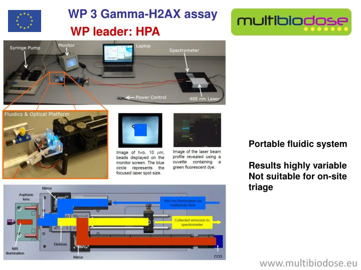 WP 3 Gamma-H2AX assay