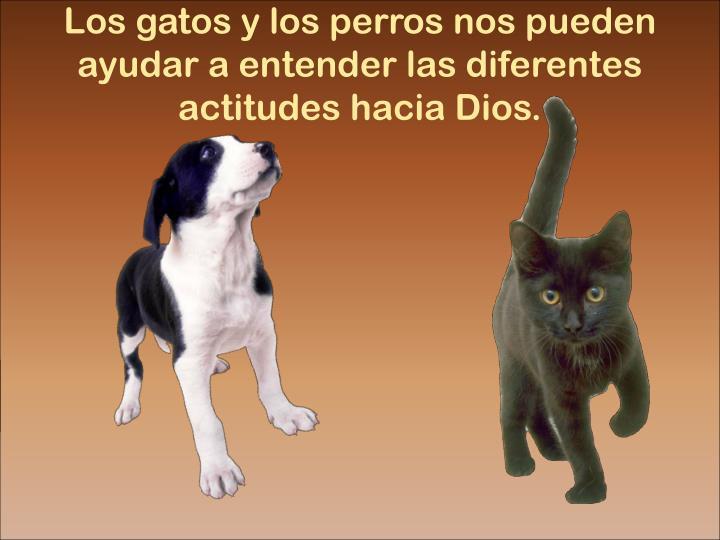 Los gatos y los perros nos pueden ayudar a entender las diferentes actitudes hacia Dios.