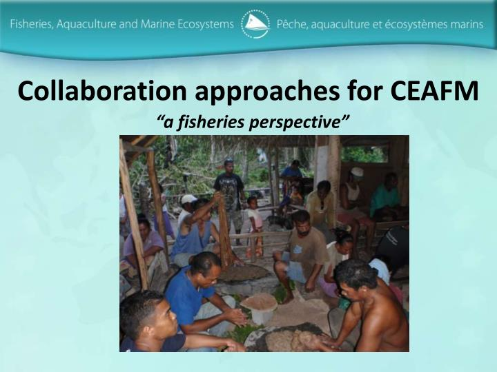 Collaboration approaches for ceafm
