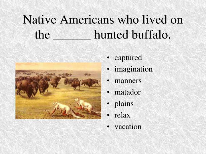 Native Americans who lived on the ______ hunted buffalo.