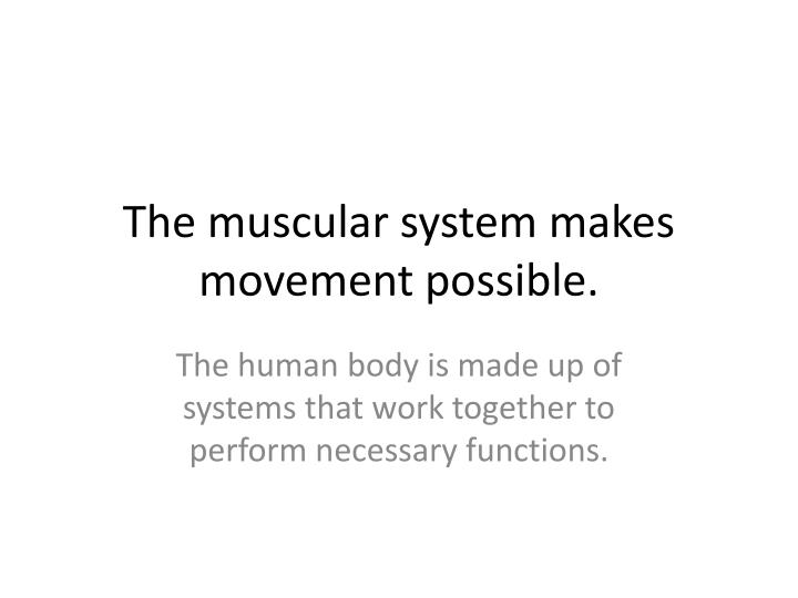 the muscular system makes movement possible n.