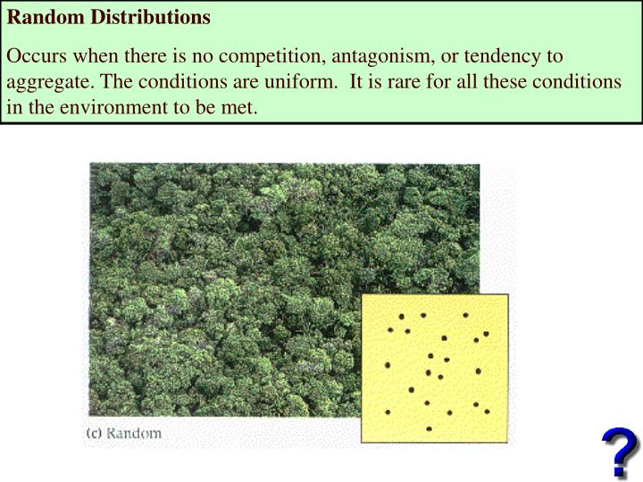 Random Distributions