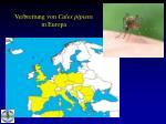 verbreitung von culex pipiens in europa