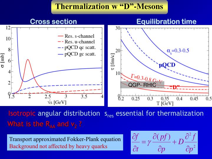 """Thermalization w """"D""""-Mesons"""