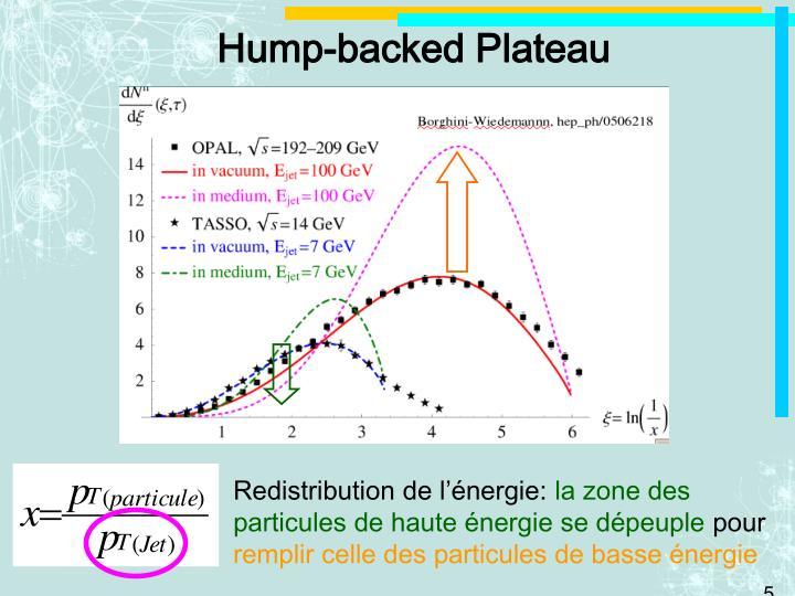 Hump-backed Plateau