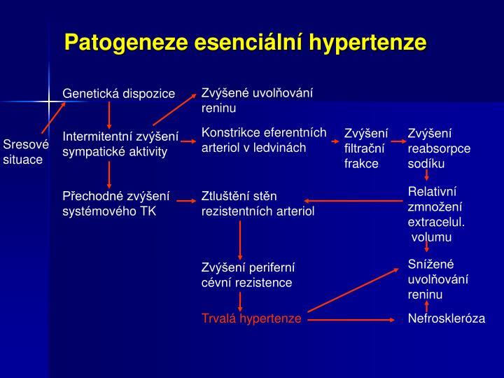 Patogeneze esenciální hypertenze