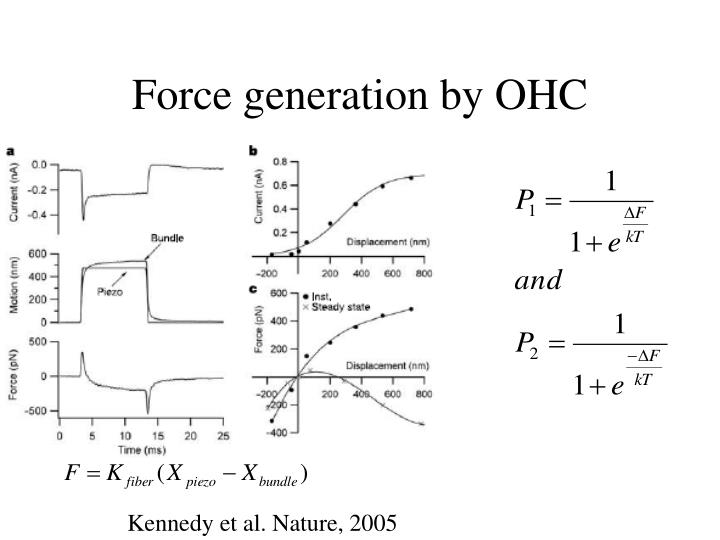 Force generation by OHC