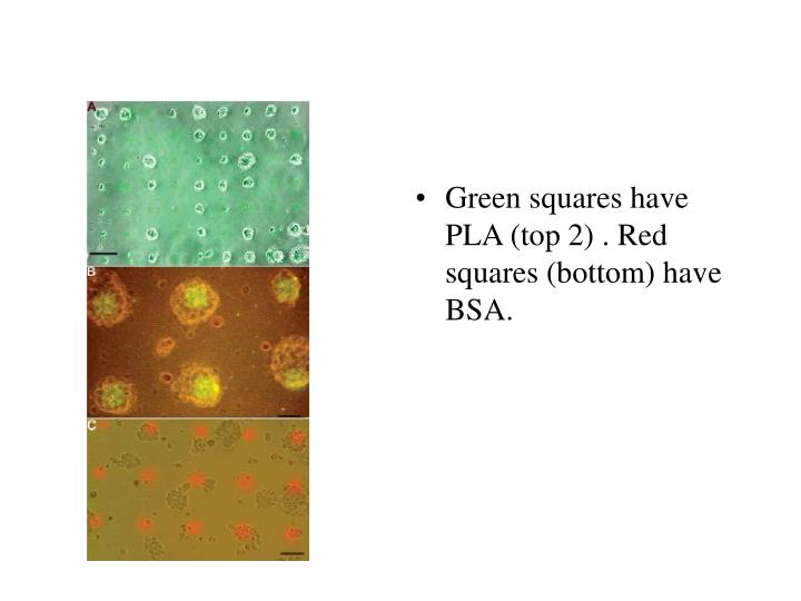 Green squares have PLA (top 2) . Red squares (bottom) have BSA.