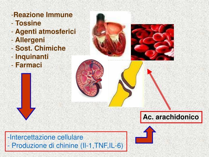 Reazione Immune
