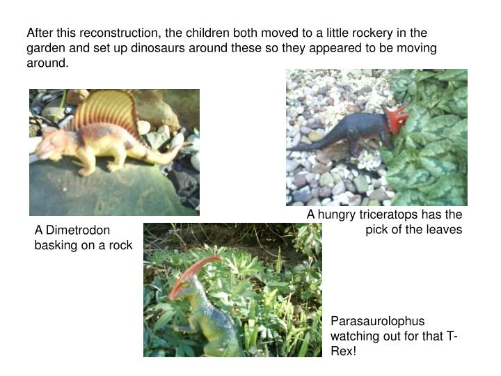 After this reconstruction, the children both moved to a little rockery in the garden and set up dinosaurs around these so they appeared to be moving around.