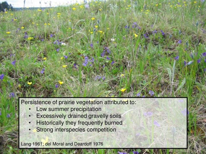 Persistence of prairie vegetation attributed to: