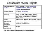 classification of amy projects