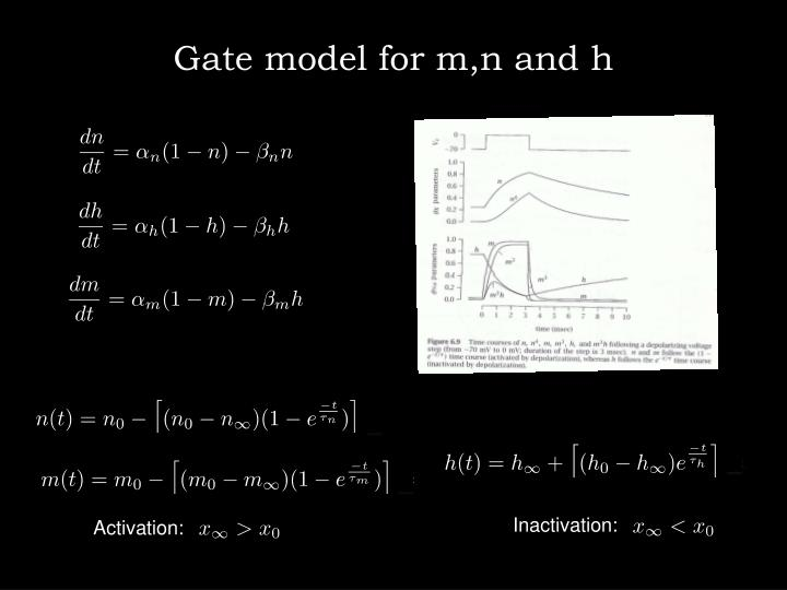 Gate model for m,n and h