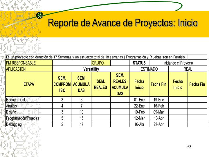 Reporte de Avance de Proyectos: Inicio