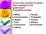do you have a product or service that is attractive to the government a sampling includes