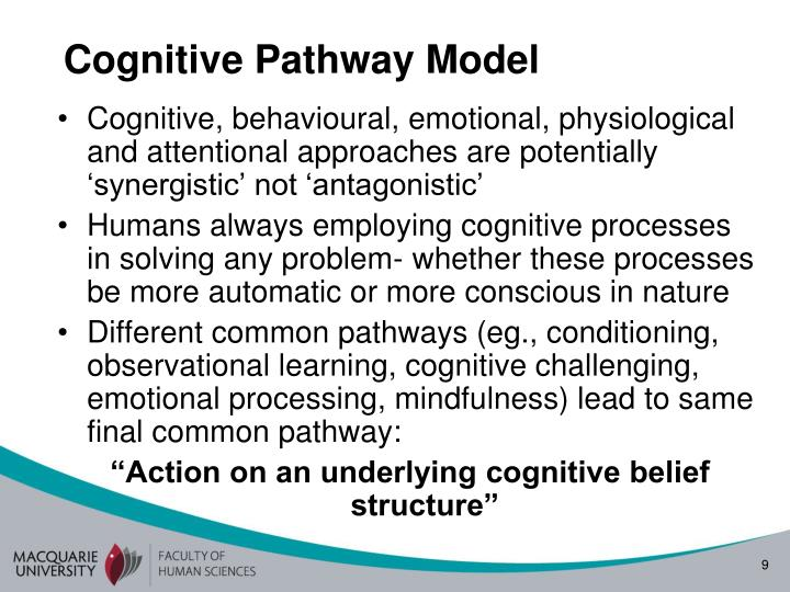 Cognitive Pathway Model