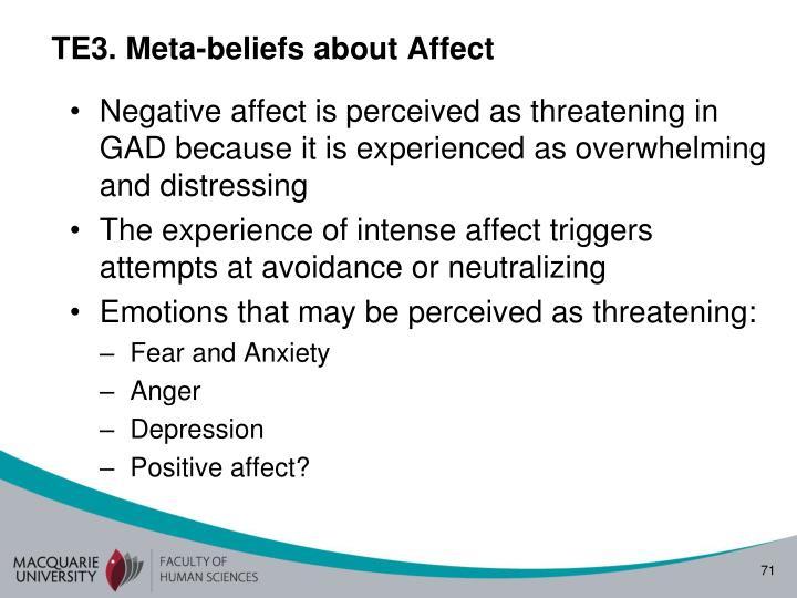 TE3. Meta-beliefs about Affect