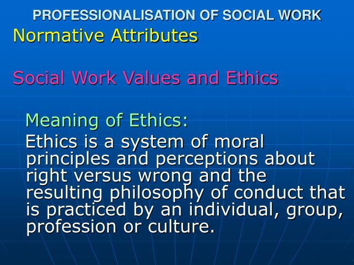 PROFESSIONALISATION OF SOCIAL WORK