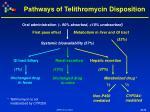 pathways of telithromycin disposition