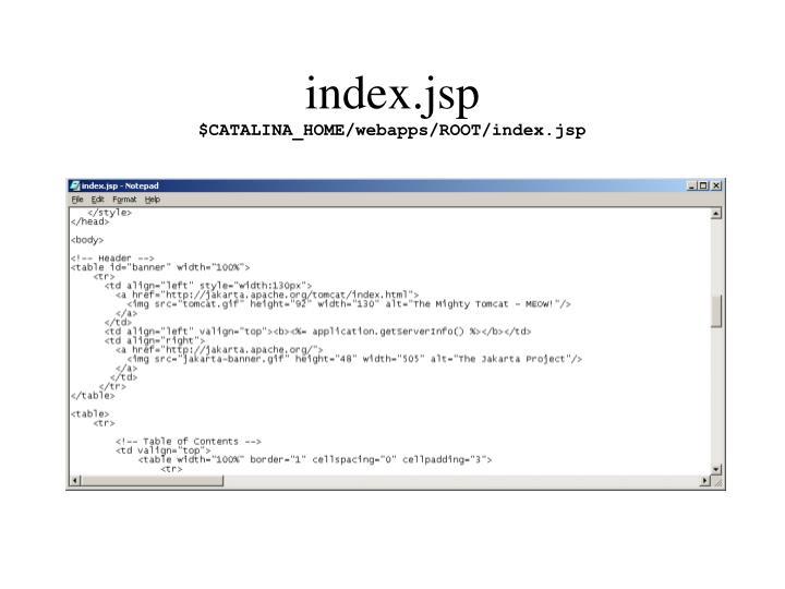 index.jsp