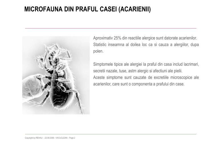 Microfauna din praful casei acarienii
