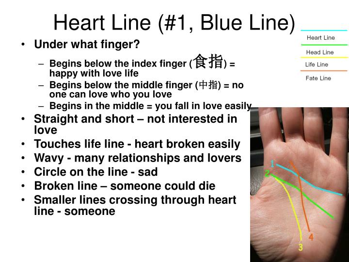 Heart Line (#1, Blue Line)