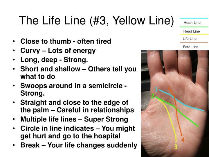 The Life Line (#3, Yellow Line)