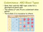 codominance abo blood types