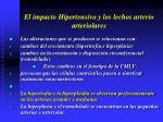 el impacto hipertensivo y los lechos arterio arteriolares13