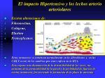 el impacto hipertensivo y los lechos arterio arteriolares17