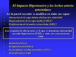 el impacto hipertensivo y los lechos arterio arteriolares2