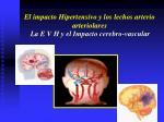 el impacto hipertensivo y los lechos arterio arteriolares20