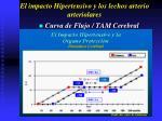 el impacto hipertensivo y los lechos arterio arteriolares26