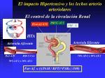 el impacto hipertensivo y los lechos arterio arteriolares44