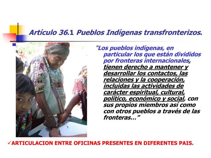 Artículo 36