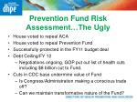 prevention fund risk assessment the ugly
