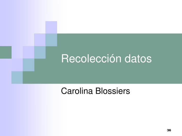 Recolección datos